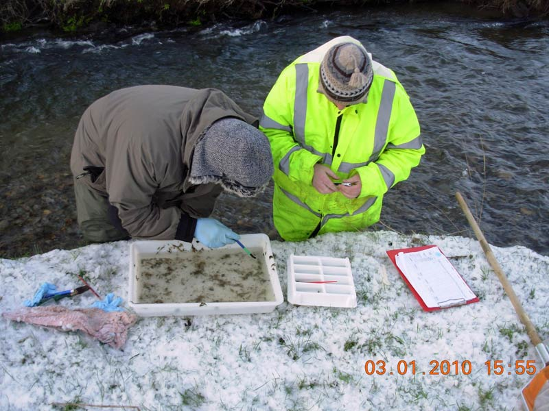 Members of Llanybydder Angling Association braving the elements for the 2009 -10 winter sample